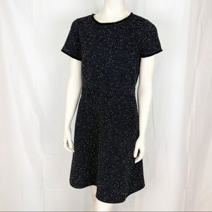 LOFT Dress Size 10p Black and White short sleeves